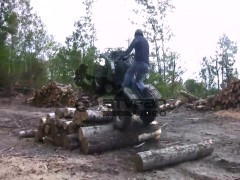 grizzly in HD conquering some timber