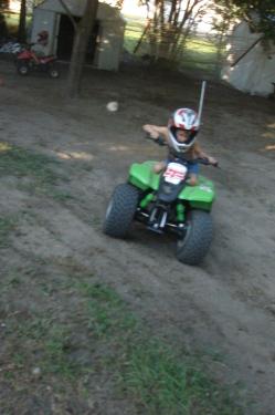Back Yard Fun! 3