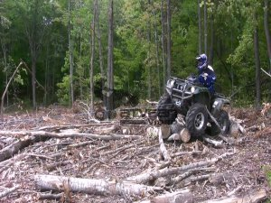 gorilla winch logs