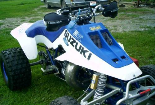 Dirtgirl's LT500R