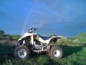 Quad and nature
